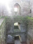 Looking down into the Blarney Castle
